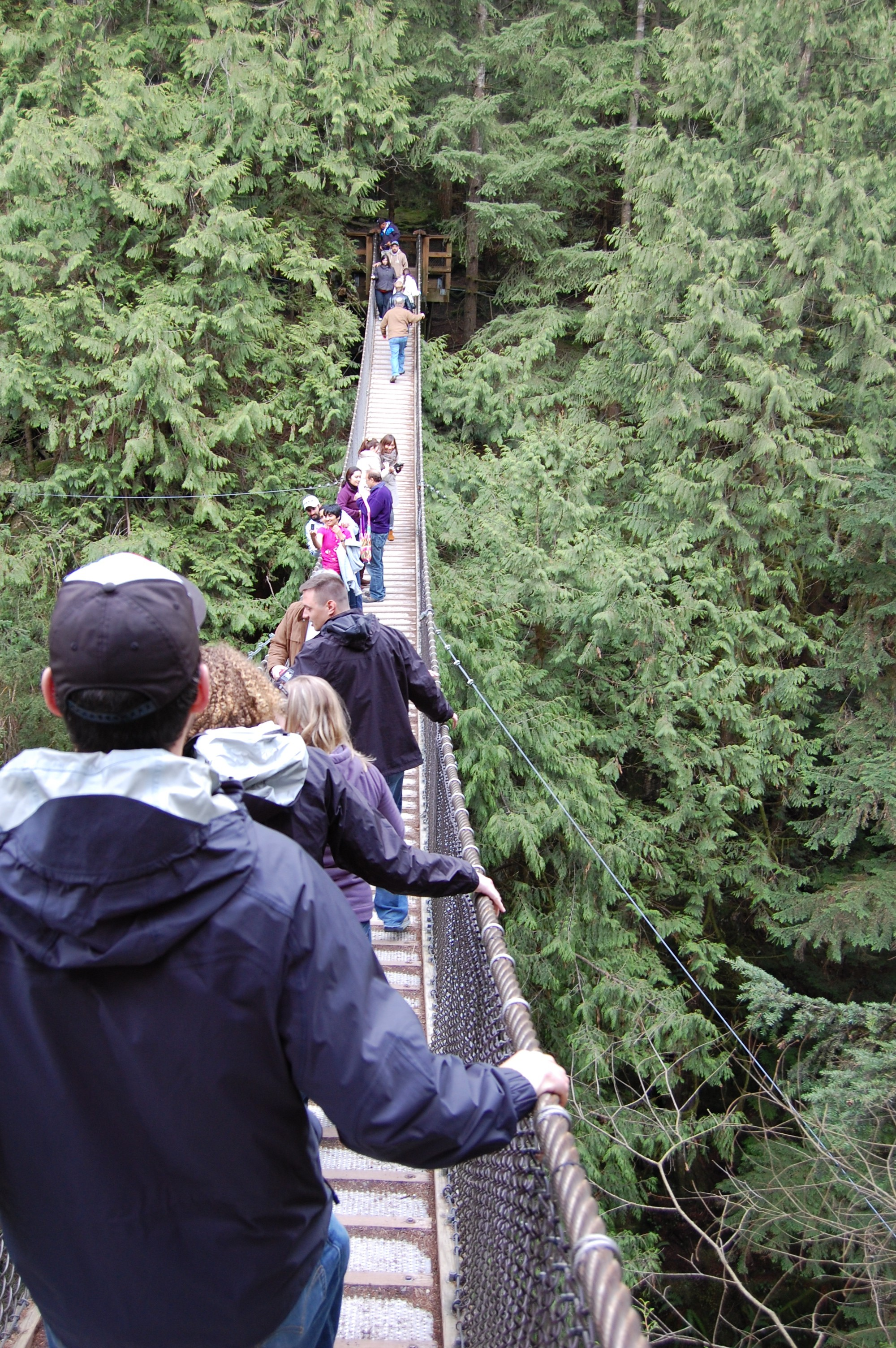 But I have to say the coolest part about the park wasnu0027t the famous suspension bridge but was the awe-inspiring natural beauty of the park itself once you ... & Lynn Valley Park: Vancouveru0027s other suspension bridge | ashly u0026 monkey